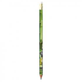 Relatiegeschenk BIC® Potlood Evolution® Digital Ecolutions®