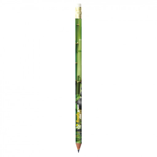Relatiegeschenk BIC® Potlood Evolution® Digital Ecolutions® bedrukken